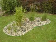 zpestření v trávníku